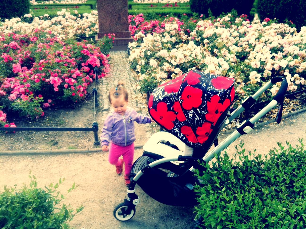 Zwiedzamy rosarium